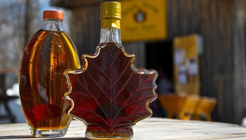 Discover Your Maple Adventure in Huntsville