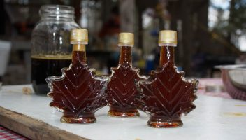 Top 5 Reasons to Attend the Muskoka Maple Festival