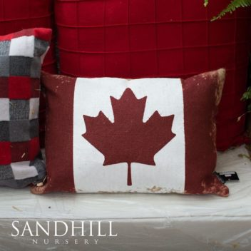 Canadian Themed Pillow