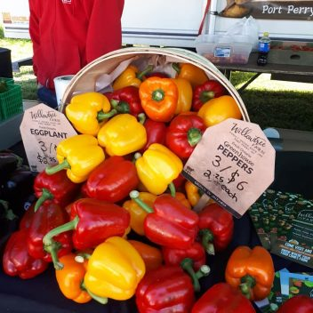 Bell Peppers at the Farmers Market