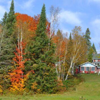 Fall Colours at Billie Bear Resort