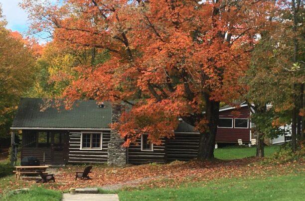 Billie Bear Resort Cabin in the Fall