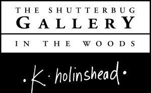 The Shutterbug Gallery Logo