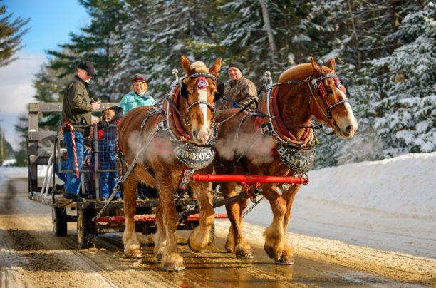 Horse Drawn Wagon Rides at the Dwight Winter Carnival