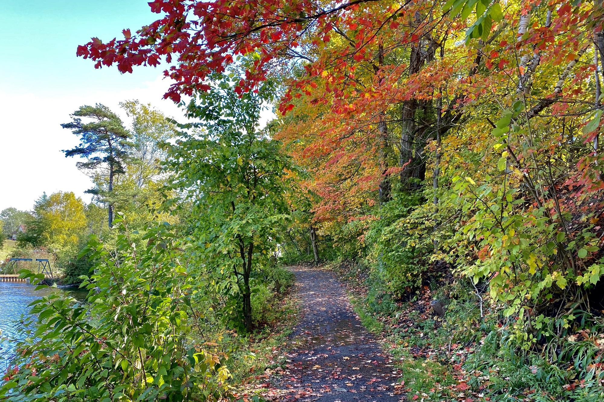 Hunters Bay Trail